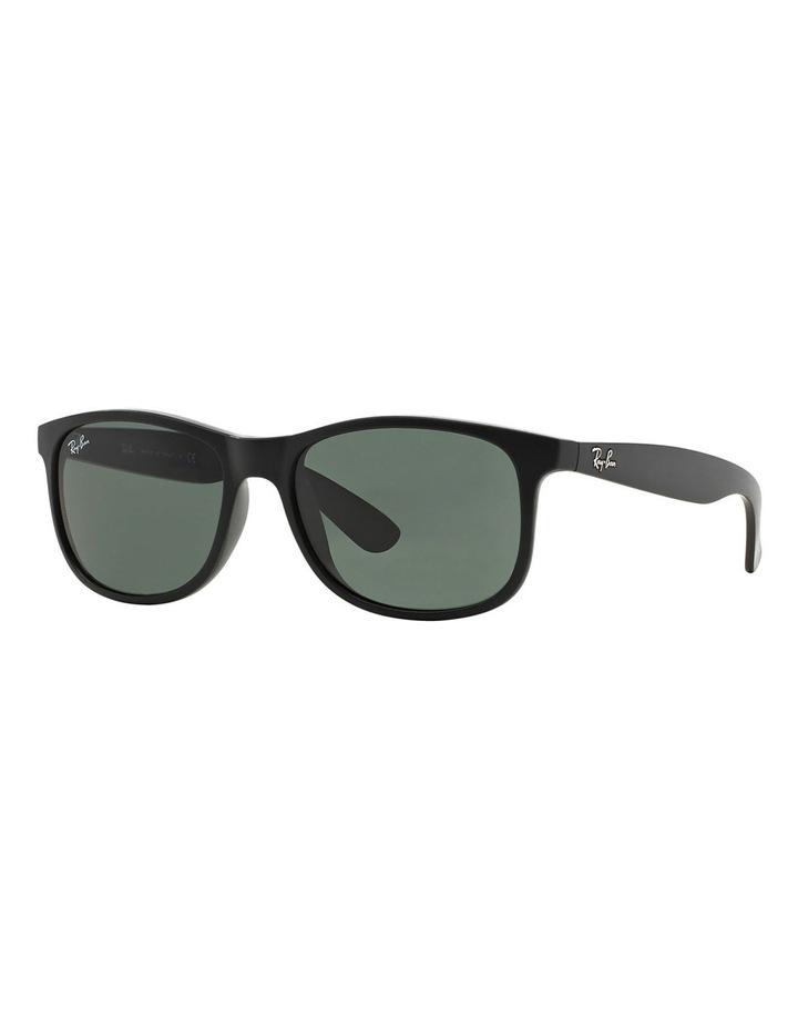 RB4202 359851 Sunglasses image 3