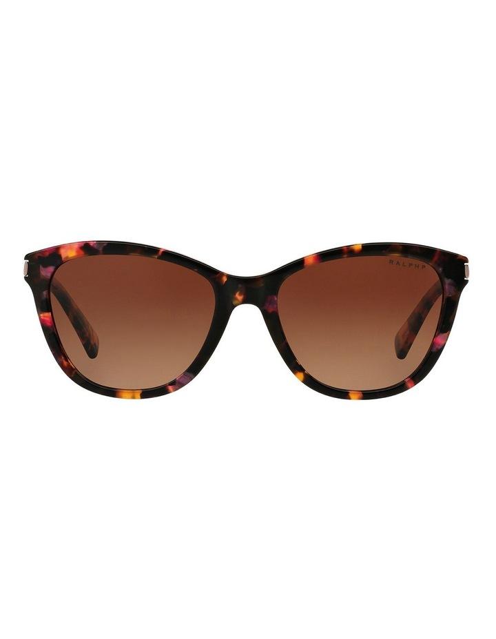 RA5201 386322 Polarised Sunglasses image 1