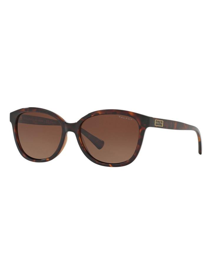 RA5222 404379 Polarised Sunglasses image 4