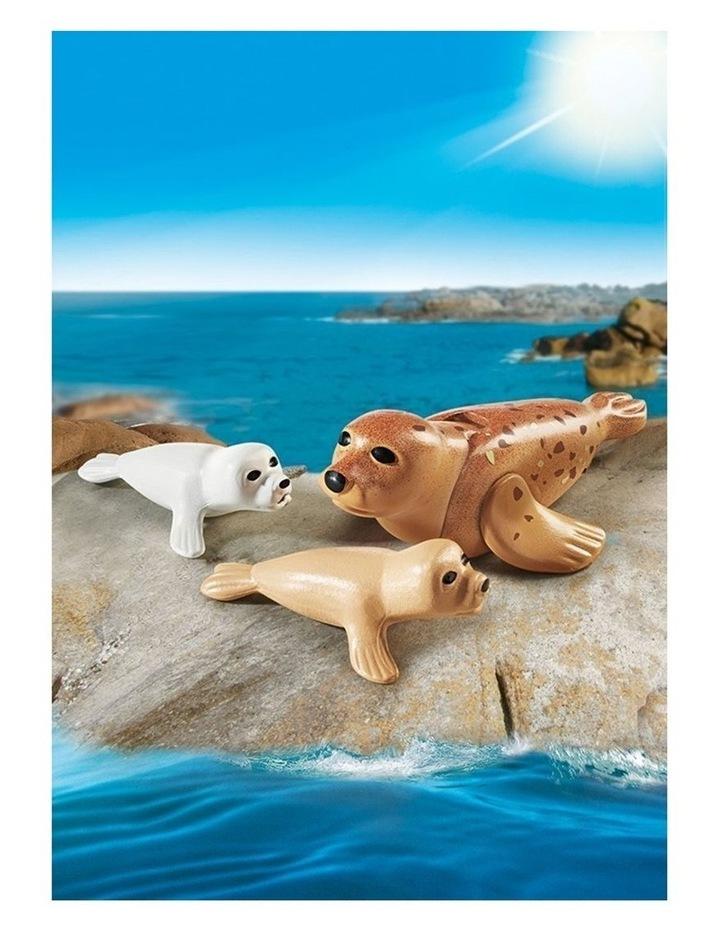 Aquarium - Seal With Pups image 2