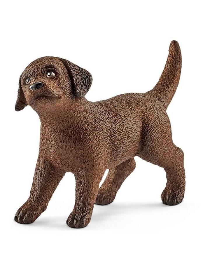 Labrador Retriever Puppy image 1