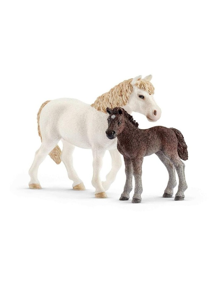Pony Mare & Foal image 1