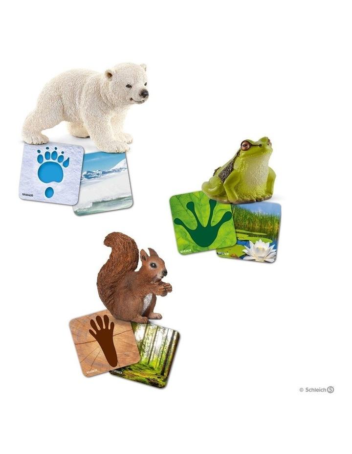 Wild Life Flash Cards image 2