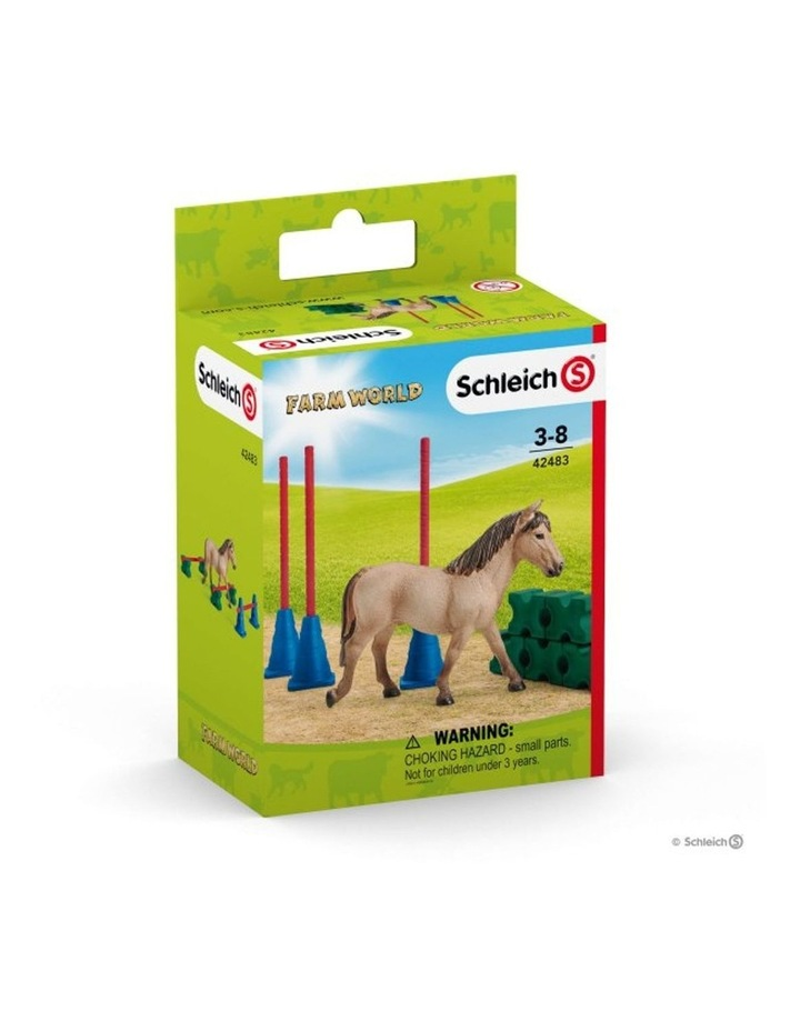 Pony Slalom image 1