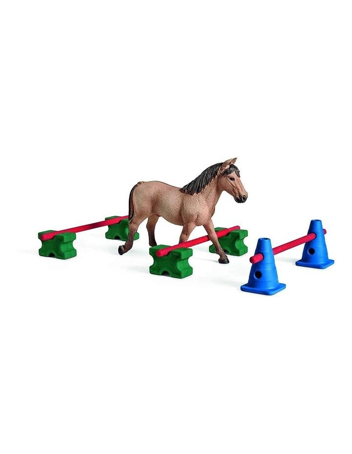 Pony Slalom image 2