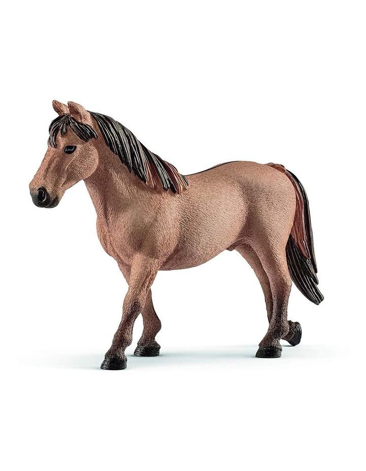 Pony Slalom image 4