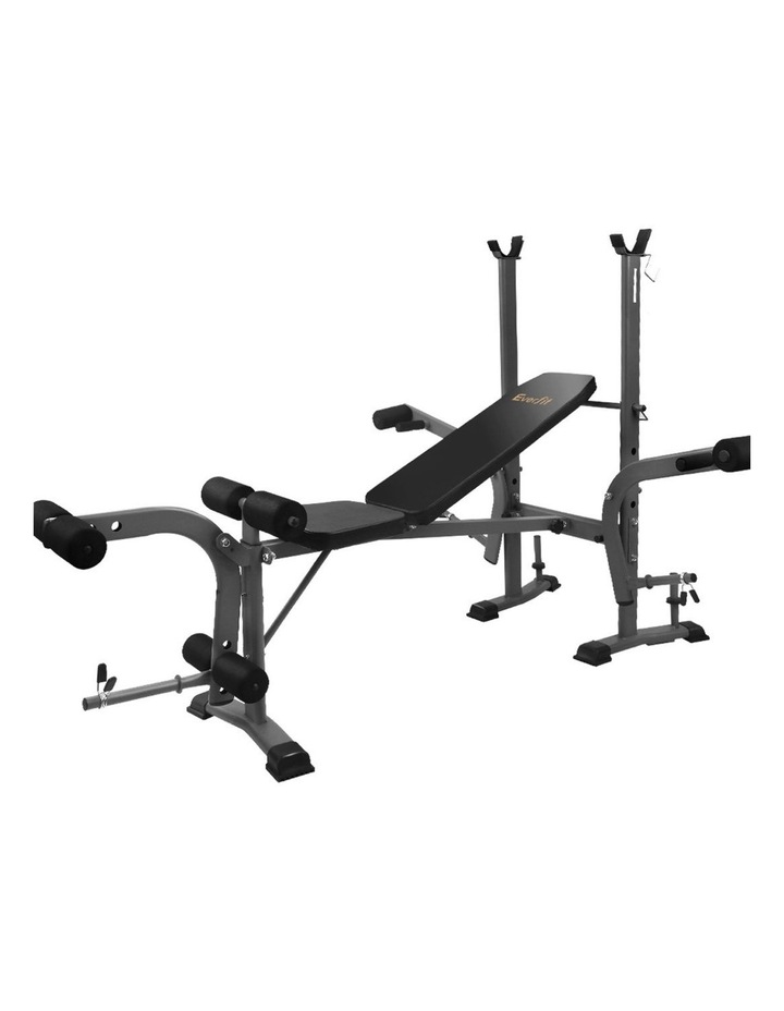Multi-Station Weight Bench image 1