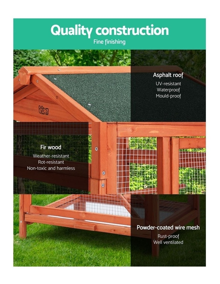 Bird Cage  XL image 5