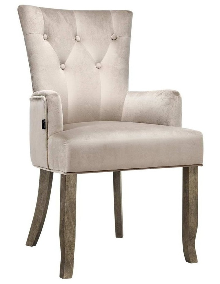 Dining Chairs French Provincial Chair Velvet Fabric Timber Retro Camel image 1