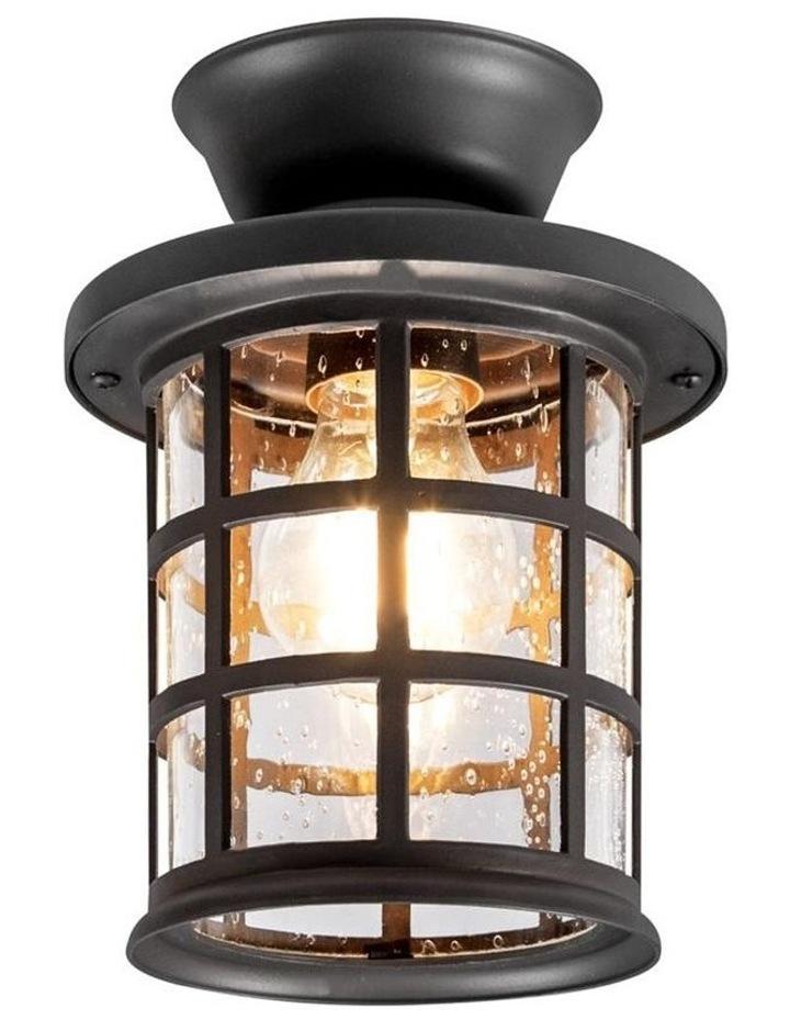 Louis Ceiling Light image 1
