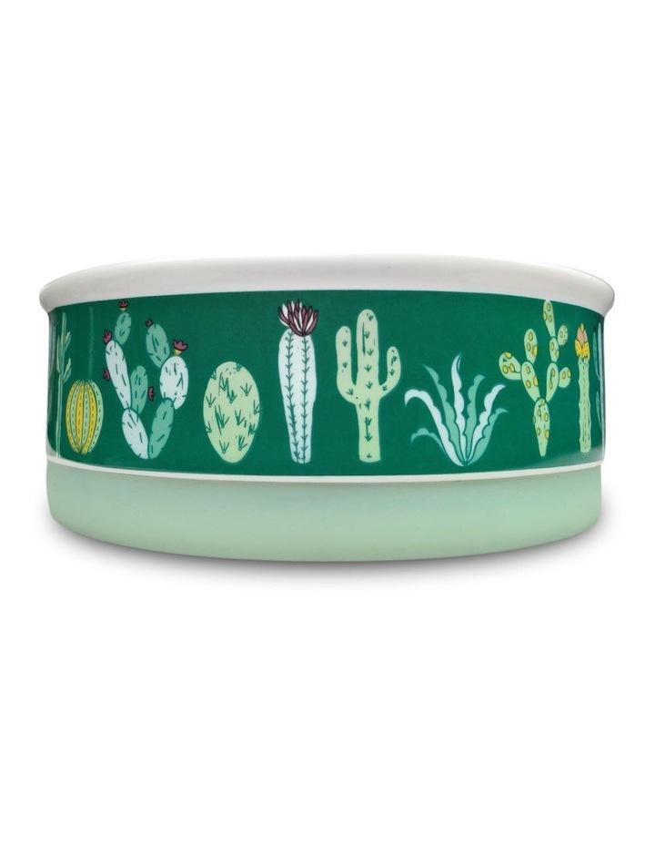Cactus Garden Designer Pet Bowl Set image 3