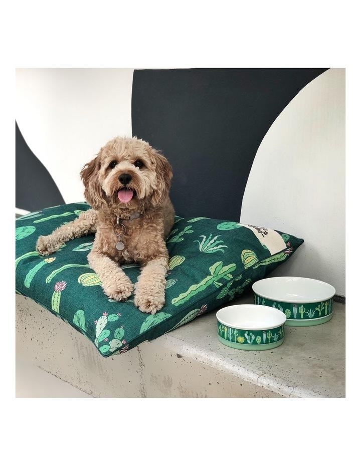 Cactus Garden Designer Pet Bowl Set image 5