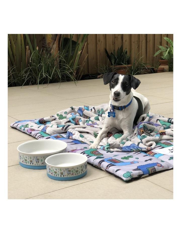 Alpaca Family Designer Pet Bowl Set image 6