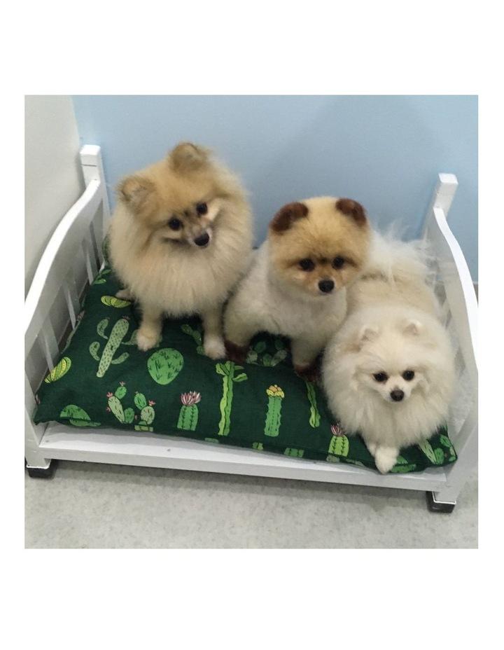 Cactus Garden  LARGE Dog Bed image 4