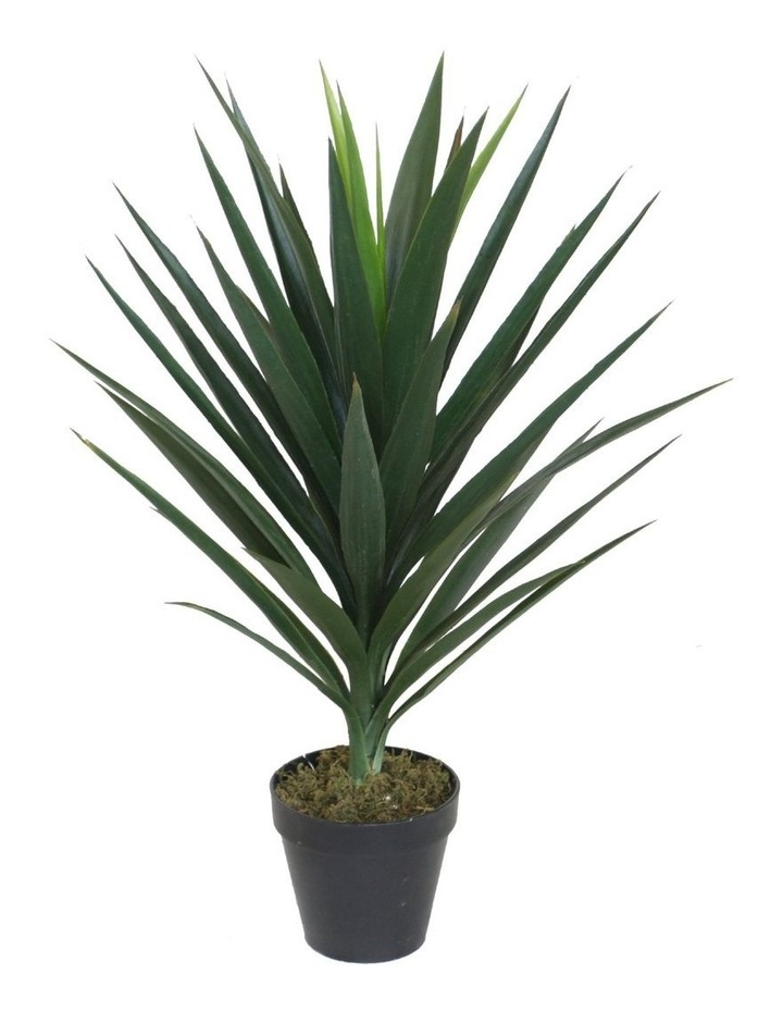 75Cm Tall Potted Yucca Home Decor Fake Plant image 1