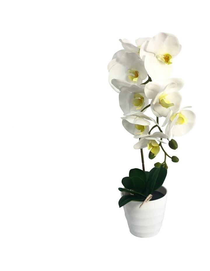 50Cm Artificial Orchid Plant image 1