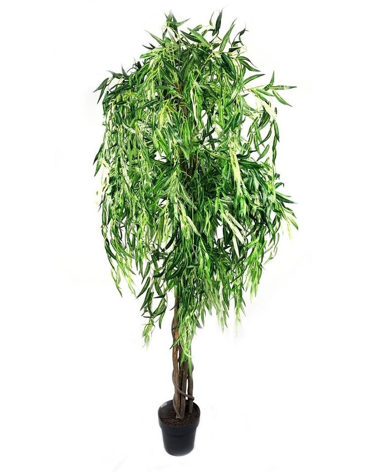 Botanica 180cm Artificial Weeping Willow Tree  Plant image 1