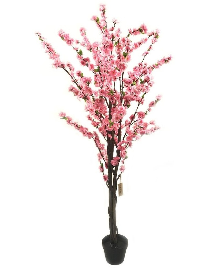 Botanica 160cm Artificial Cherry Blossom Tree Plant image 1