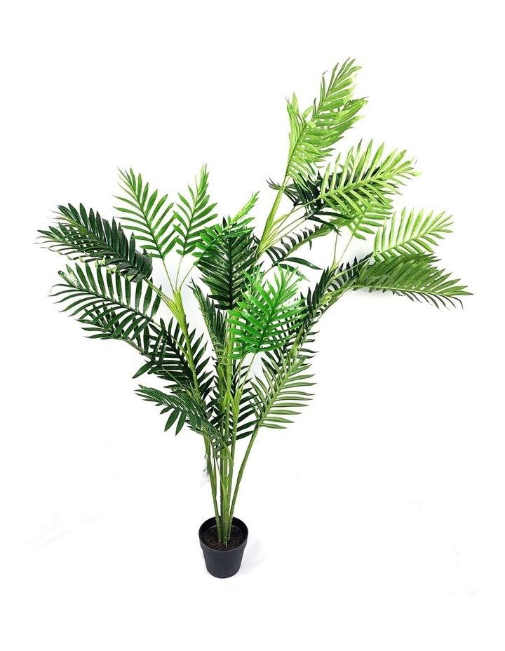 Botanica 160cm Artificial Palm Tree Plant image 1