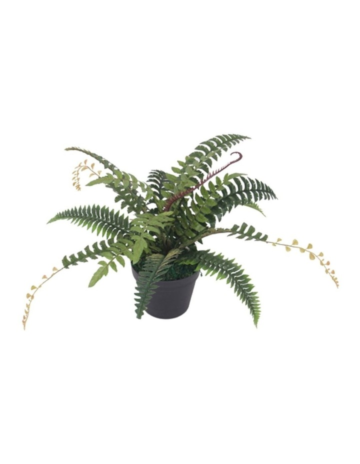 50cm Tall Potted Artificial Fern Home Decor Fake Plant Indoor image 1