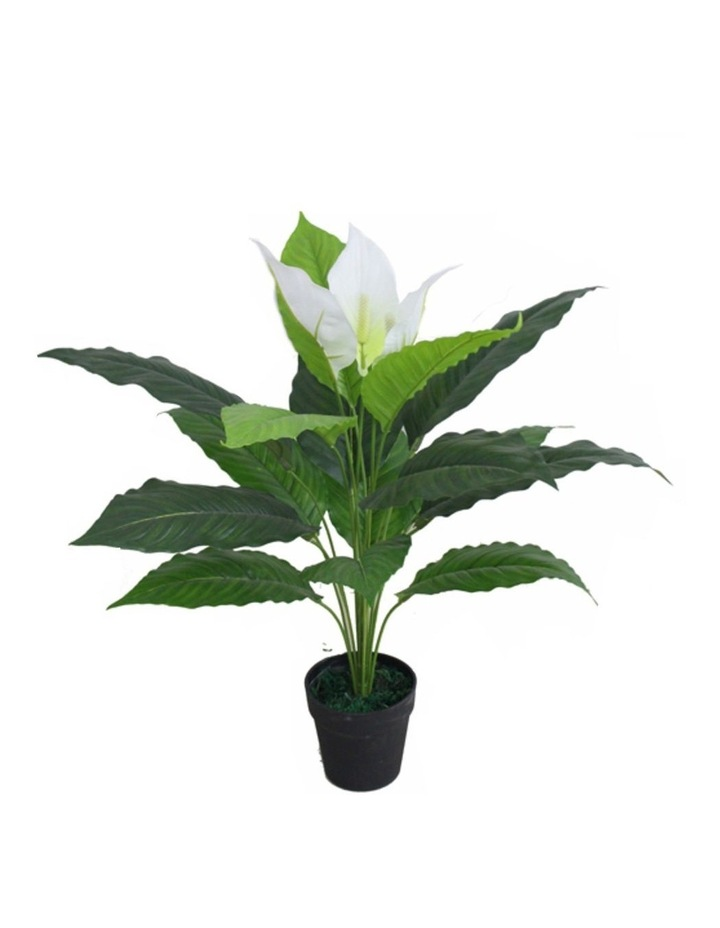 70Cm Tall Potted Artificial Peace Lily image 1