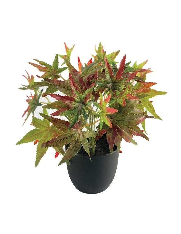 24cm Artificial Green Maple Plant image 1