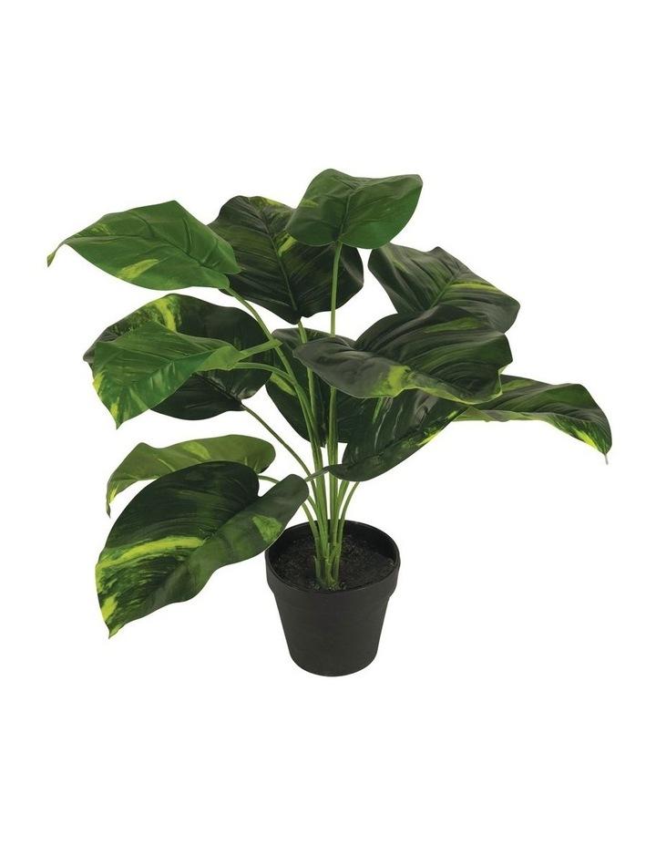 80Cm Artificial Diefenbachia Plant image 1