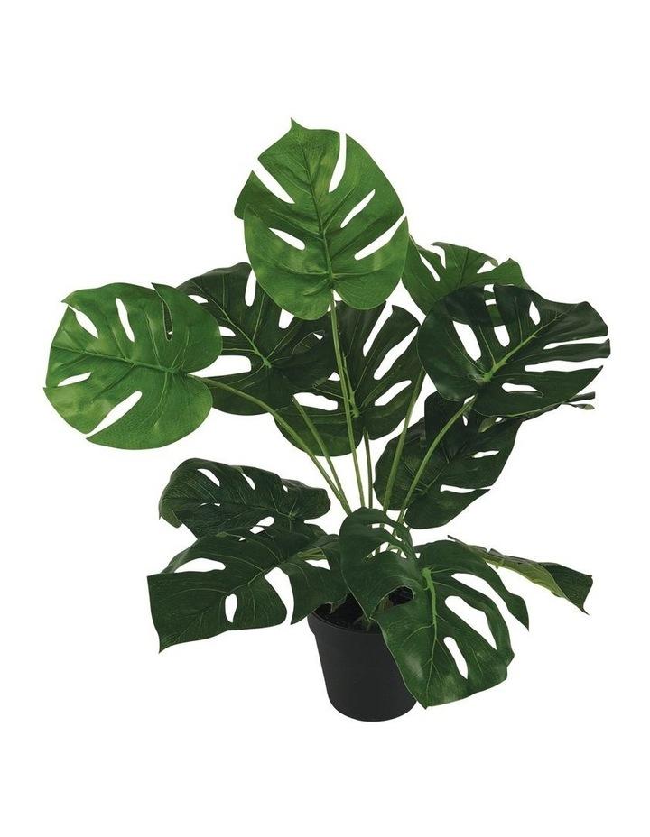 45Cm Artificial Monstera Plant image 1