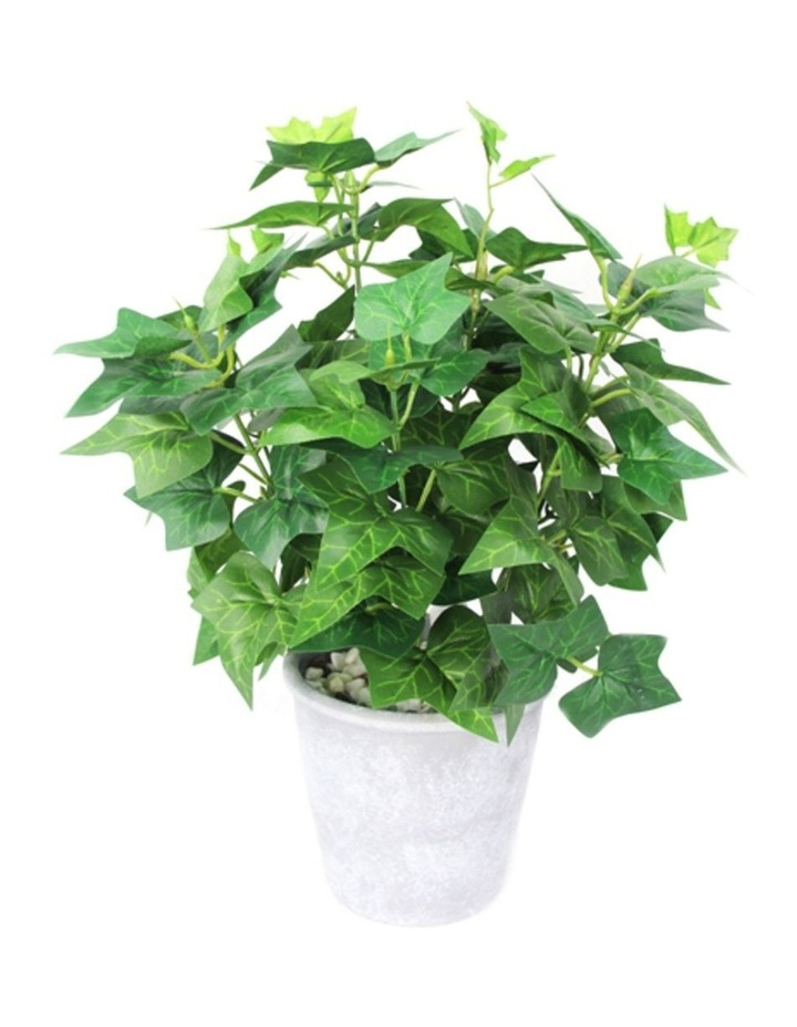 39cm Tall Potted Artificial Ivy image 1