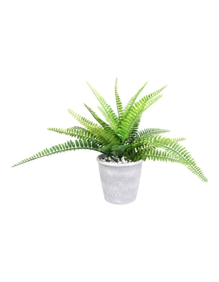 30cm Tall Potted Artificial Boston Fern image 1