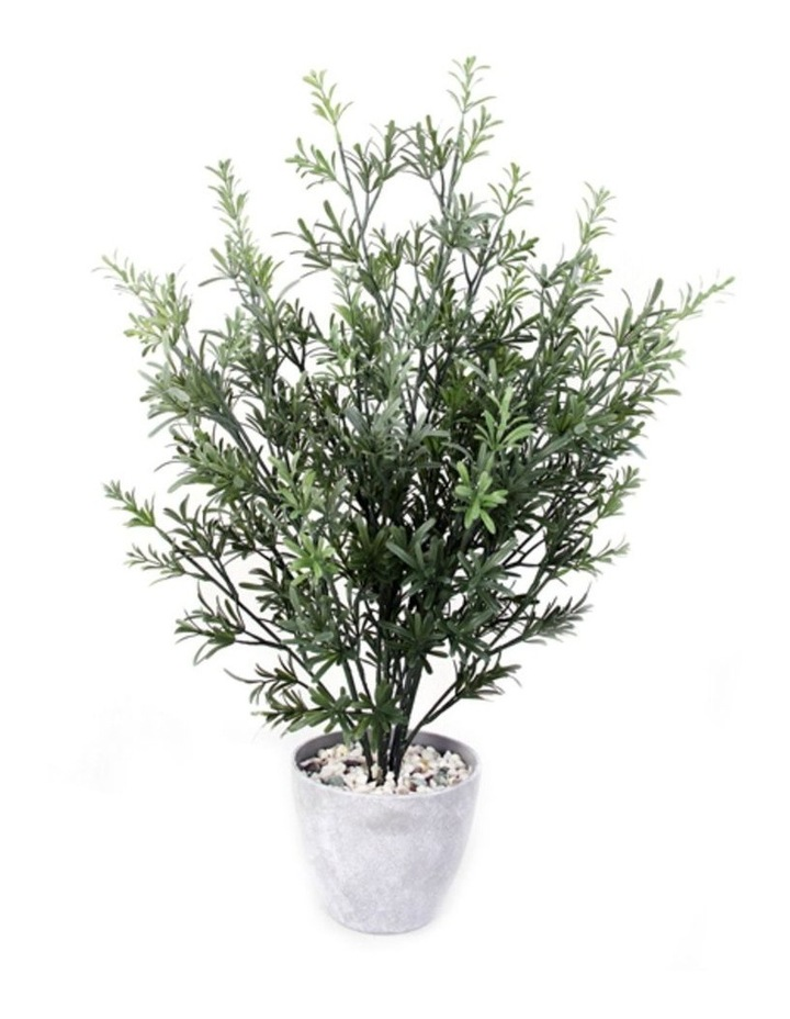 79cm Tall Potted Artificial Rosemary Tree image 1