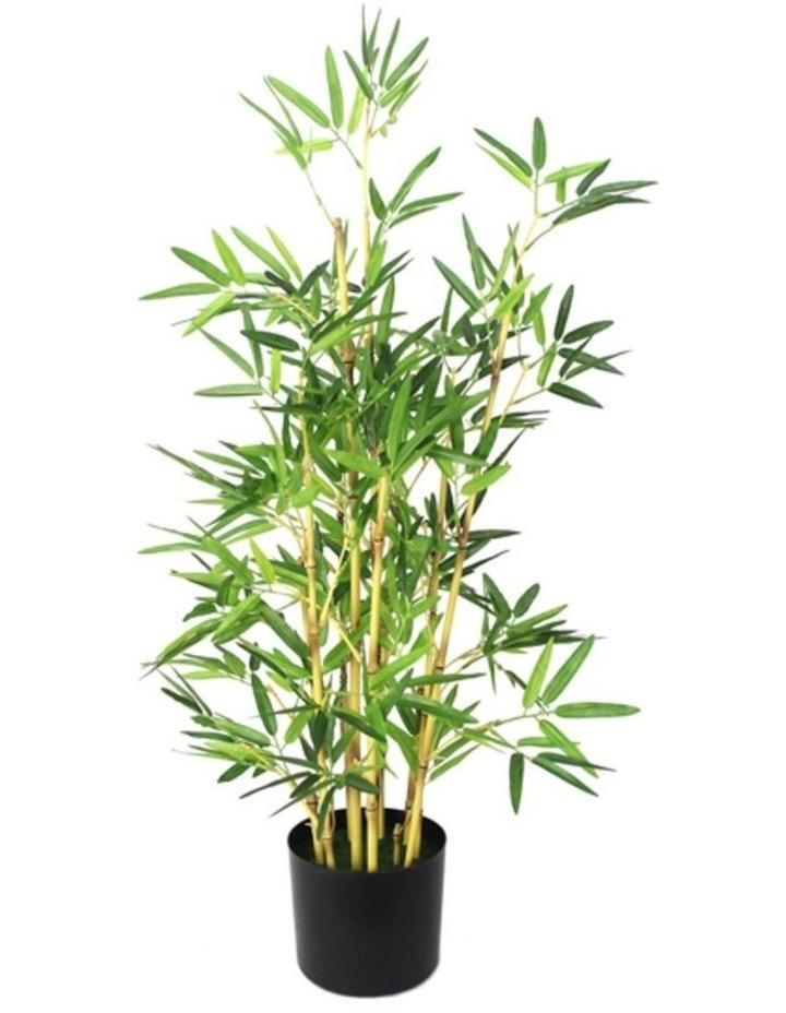 Bamboo 91 cm image 1