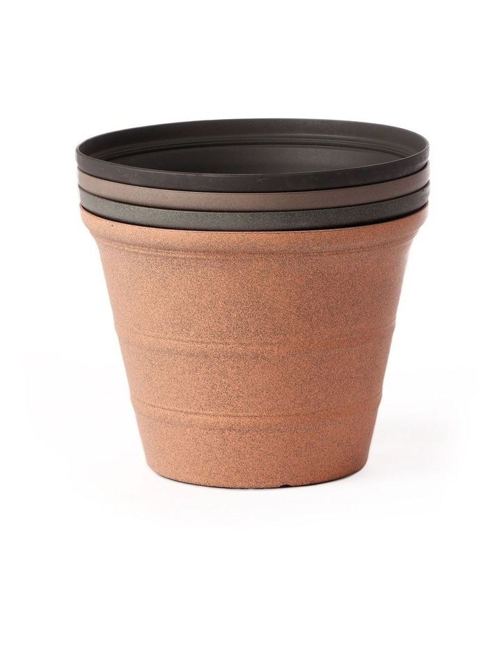 24Cm Camellia Rang Pot Planter Set Of 4 image 3