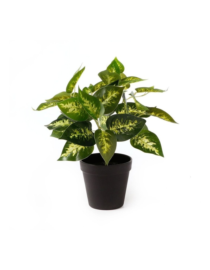 Artificial 28cm Dieffe Leaf Potted Plant image 1