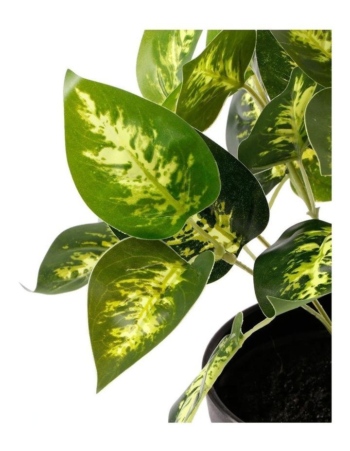 Artificial 28cm Dieffe Leaf Potted Plant image 3