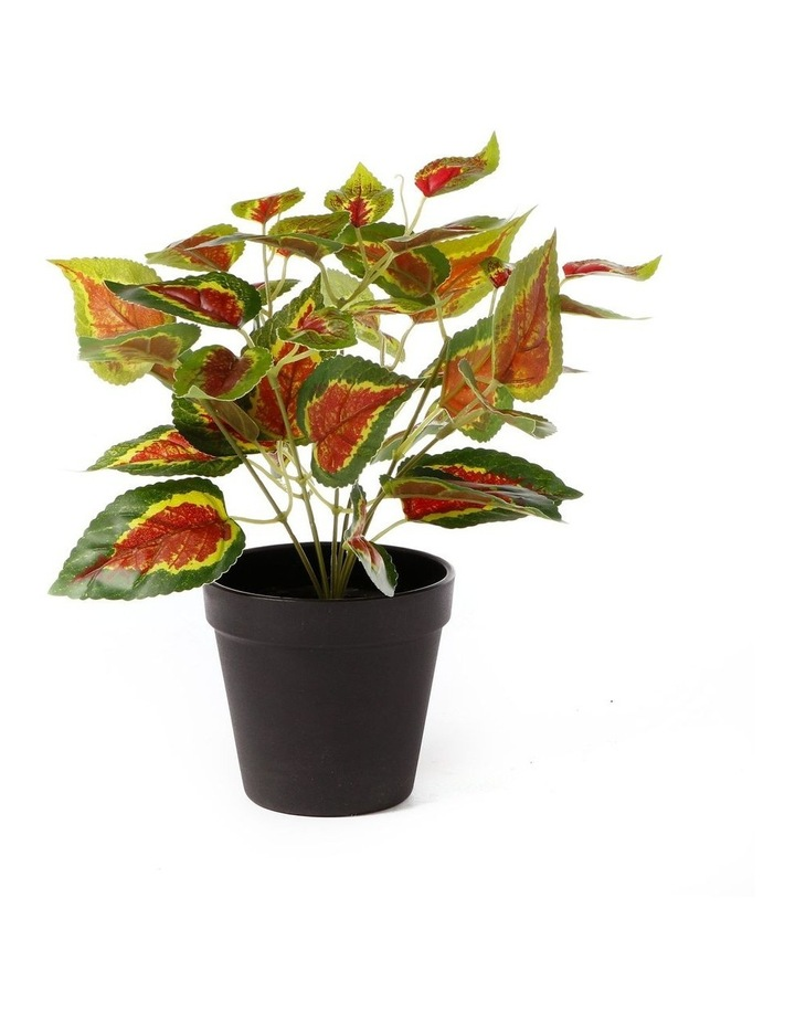 Artificial 28cm Red Leaf Potted Plant image 1