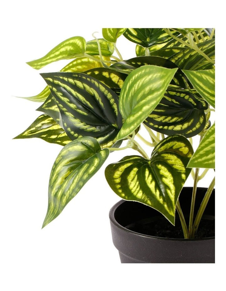Artificial 28cm Water Leaf Potted Plant image 3