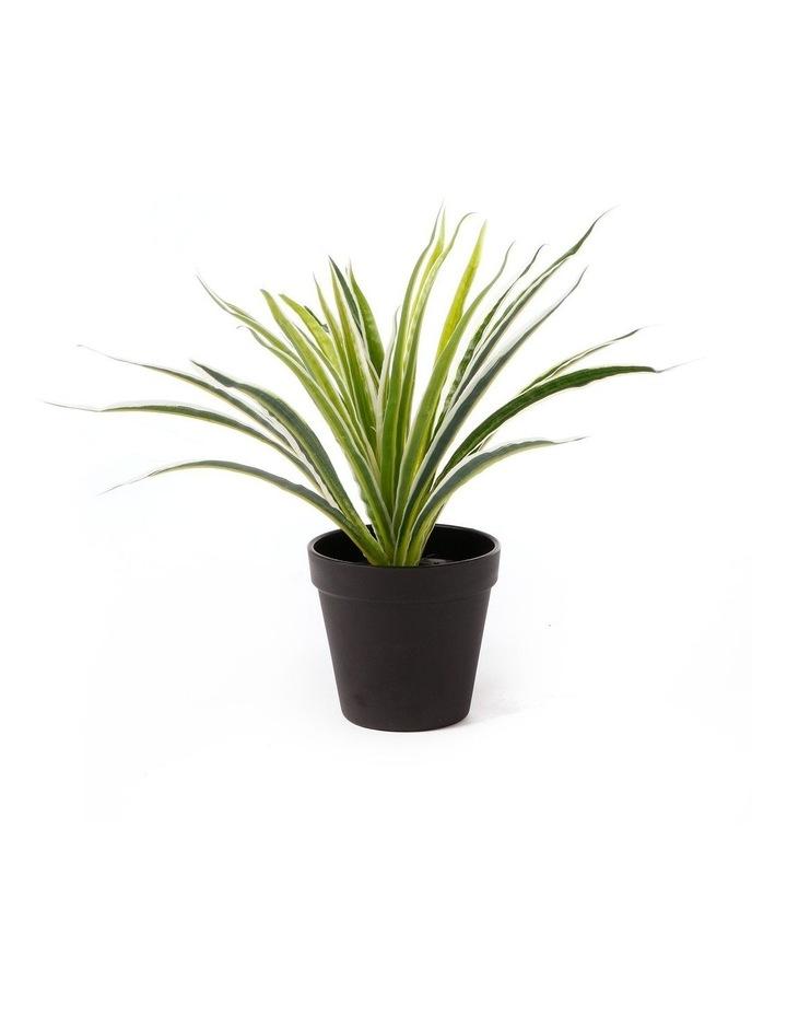 Artificial 30cm Spider Leaf Potted Plant image 1