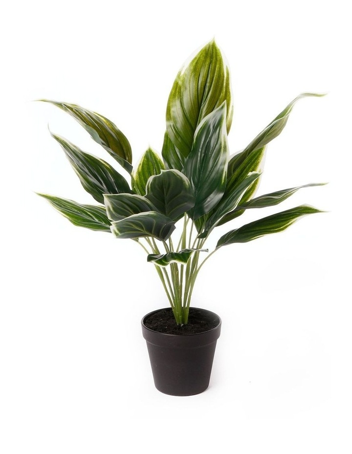 Artificial 47cm Hearty Leaf Potted Plant image 1
