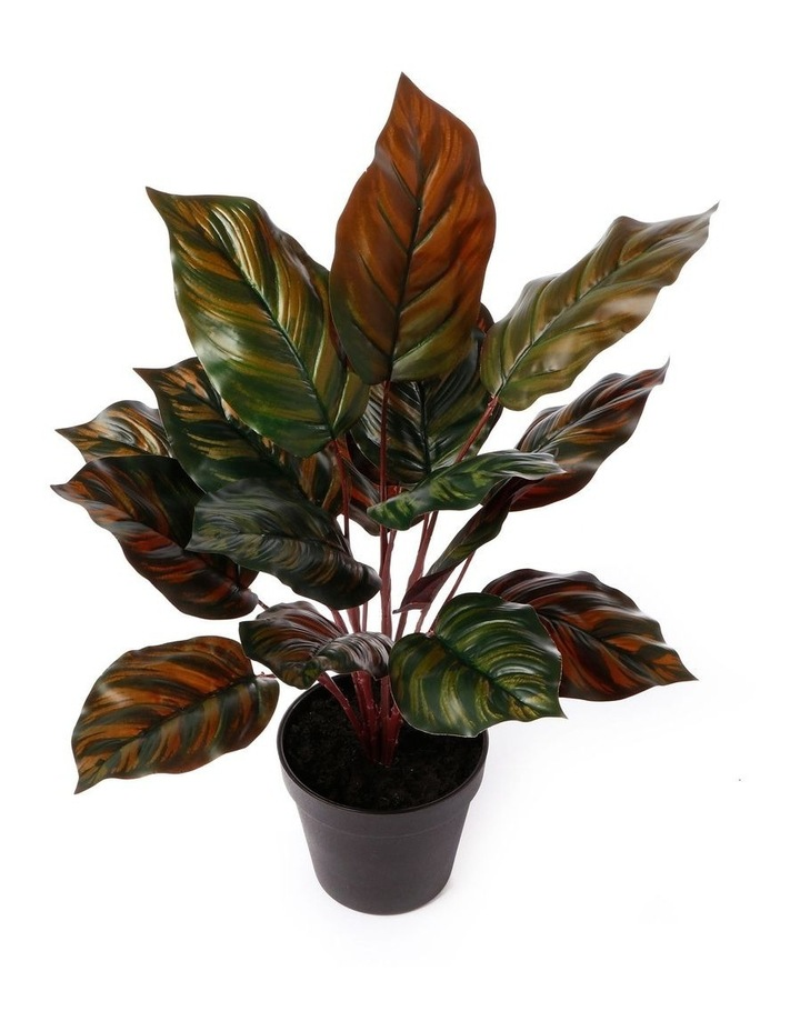 Artificial 47cm Peaccock Leaf Potted Plant image 3