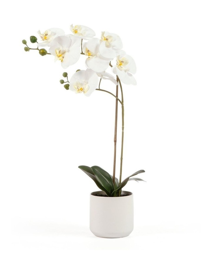 53cm Orchid Potted Artificial Plant image 1