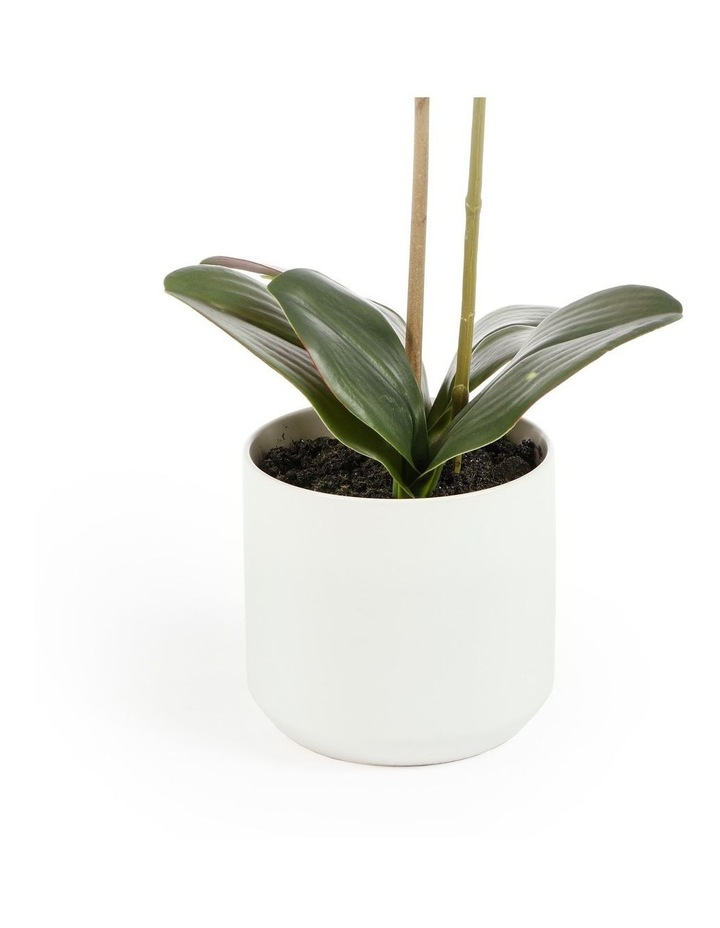 53cm Orchid Potted Artificial Plant image 4