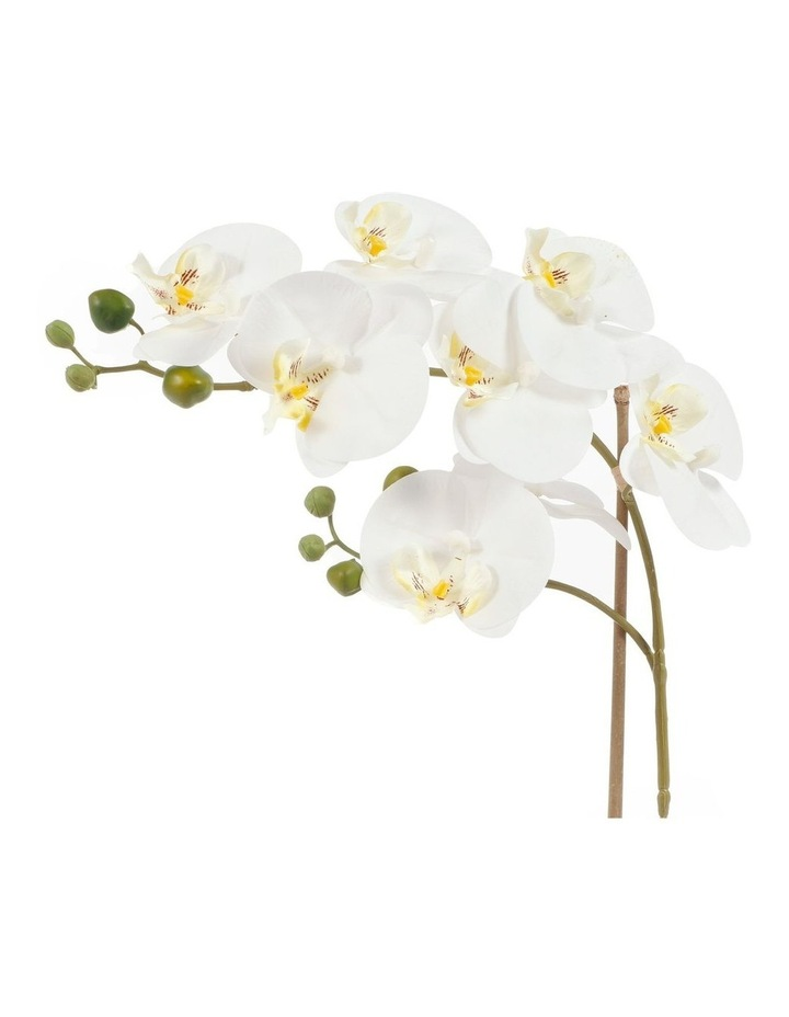 53cm Orchid Potted Artificial Plant image 6