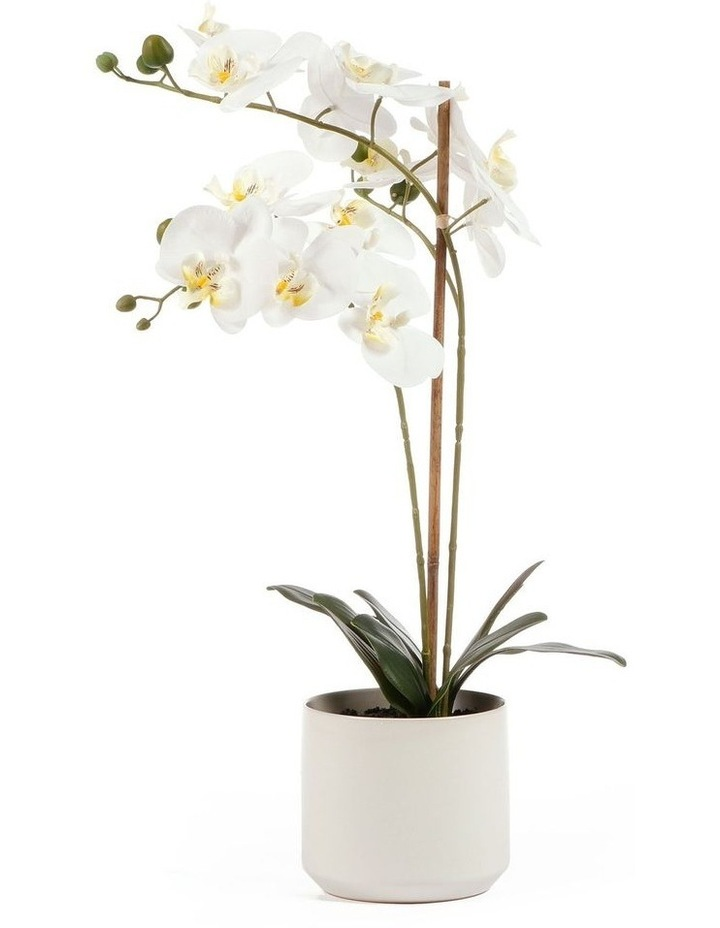 61cm Orchid Potted Artificial Plant image 1
