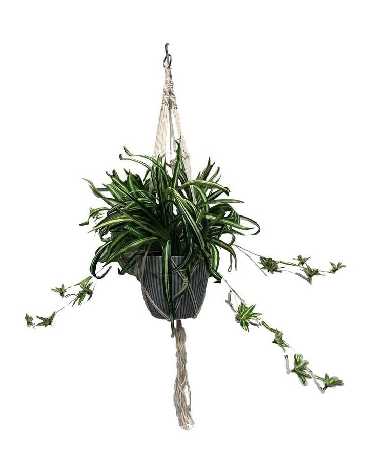 90cm Artificial Spider Leaf Hanging Potted Plant image 1