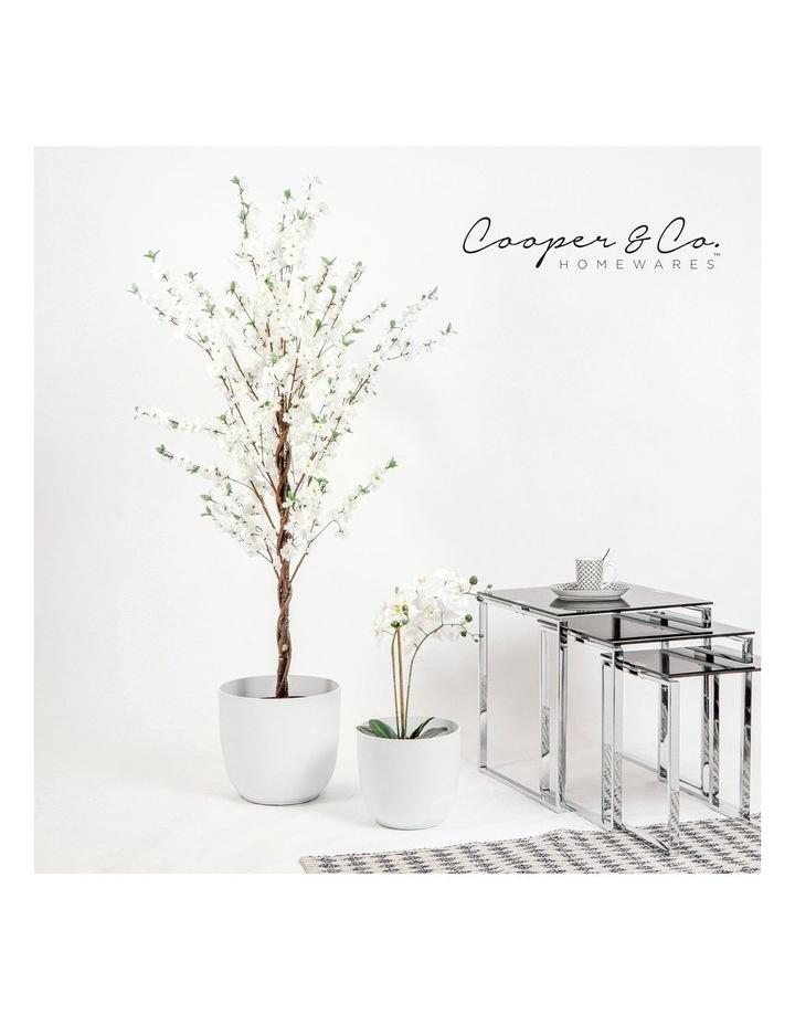 Set of 2 35cm & 28cm Massima White Round Planter Pots image 2