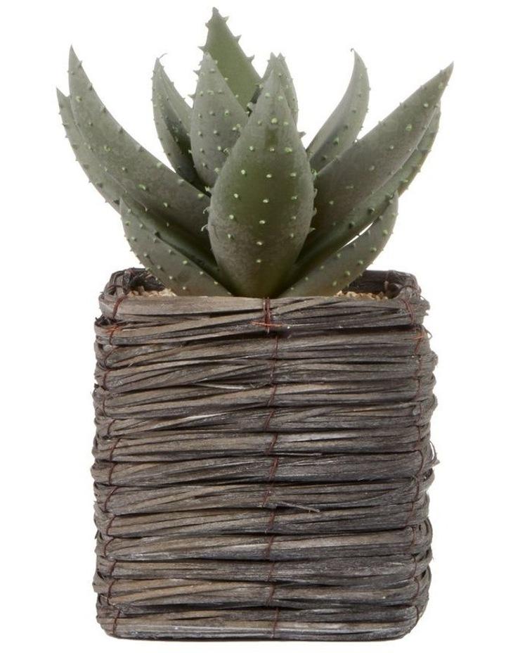 29cm Aloe Vera Artificial Plant In Basket image 1