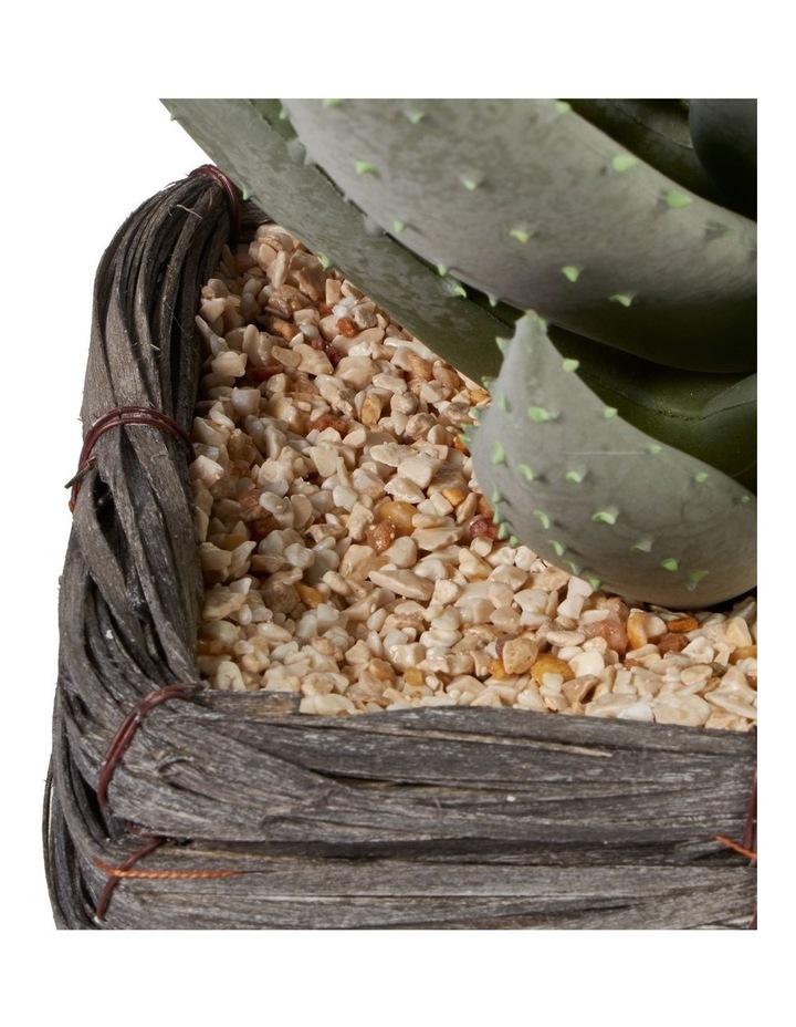 29cm Aloe Vera Artificial Plant In Basket image 5