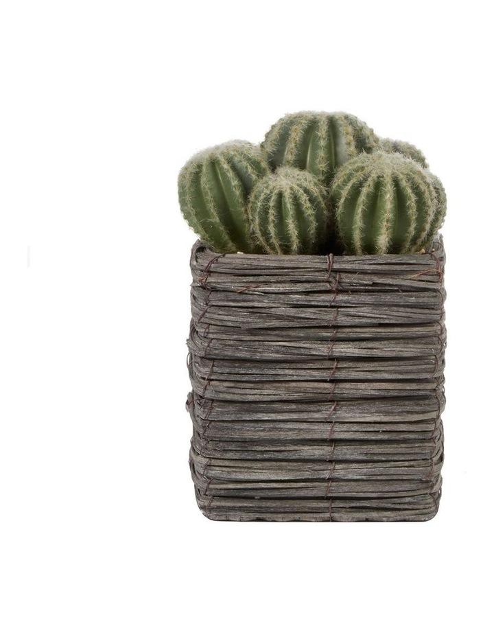 25cm Cactus Artificial Plant image 1