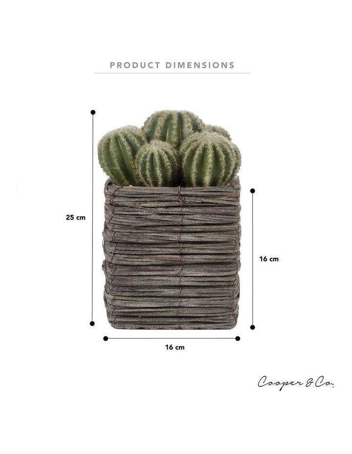 25cm Cactus Artificial Plant image 3